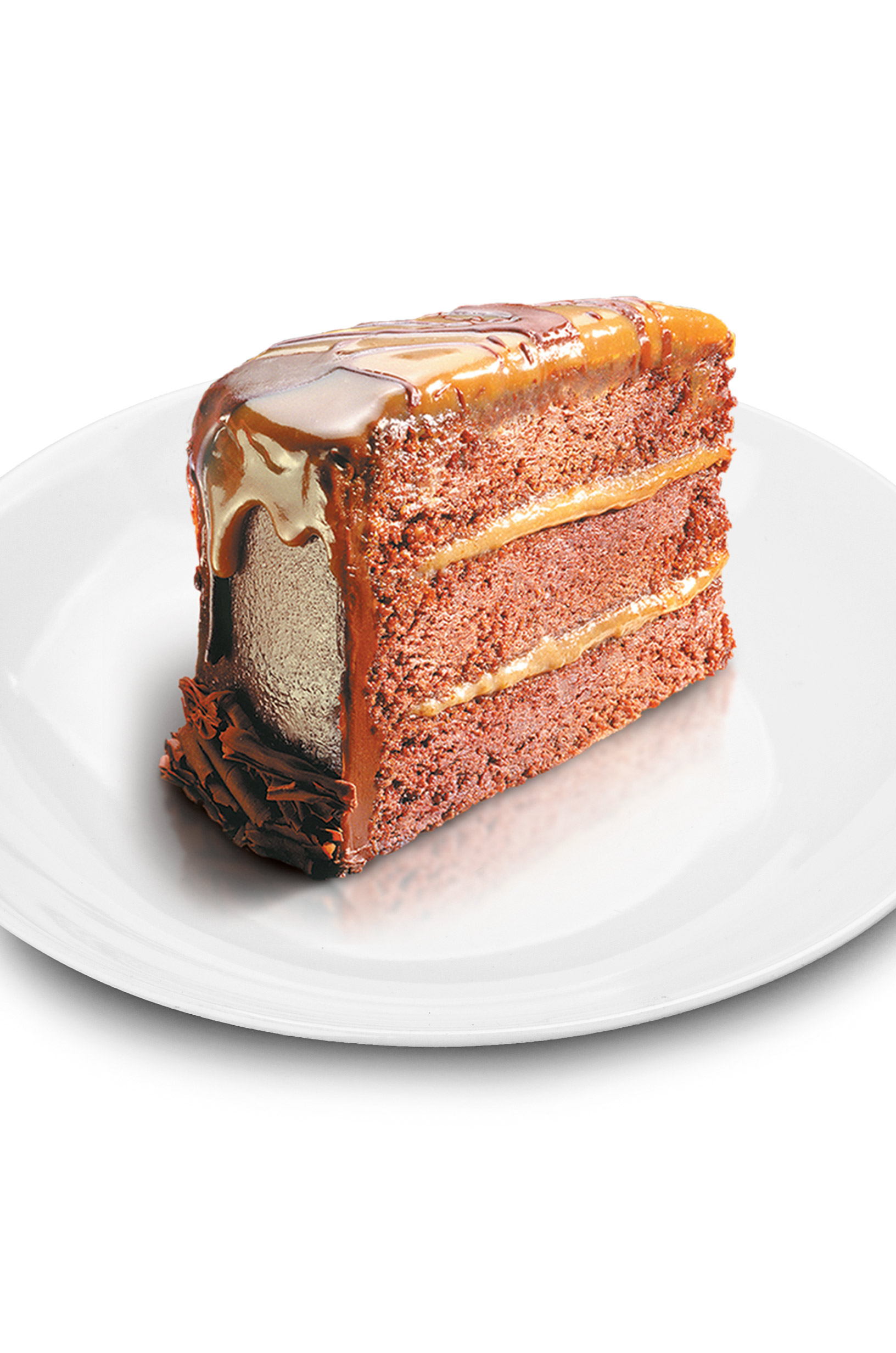 Chocolate Caramel Cake-white-plate-isolated-verticle